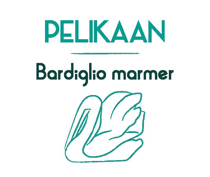 header_pelikaan