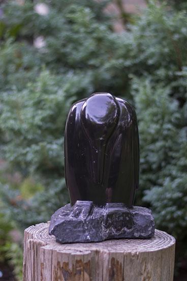 pinguin_Noir de Moizy_01